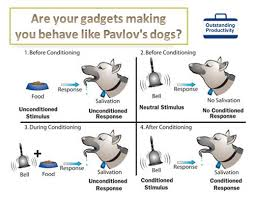 Is your government making you behave like Pavlov's Dog?